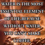Water, the essential element...